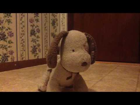 Musical wind up dog plush for babies by carter's