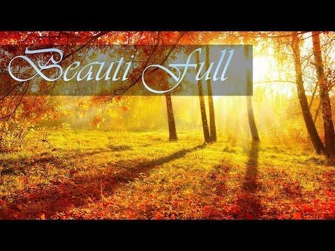 Herbst | Hintergrundbilder