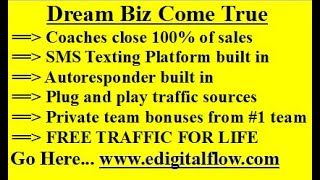 Digital Income System - Digital Income System review | Digital Income System team bonuses!
