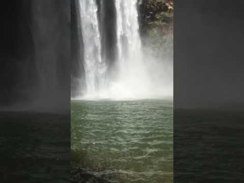 173' leap from Wailua Falls- gets knocked out