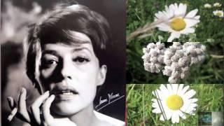 Jeanne Moreau - Moi je préfère (1963)