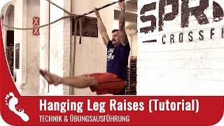Hanging Leg Raises (Beinheben im Hang) | Richtige Ausführung (Tutorial)