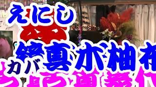 縁 唄 鏡五郎・真木柚布子 カバー 古賀稔念・古賀嘉代子