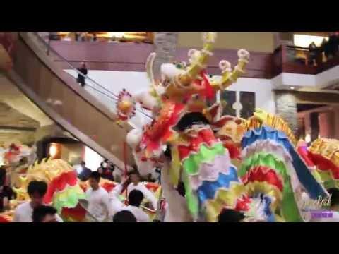 新春舞獅表演 | Chinese New Year Lion Dance 2015