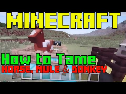 How to Tame & Ride a Horse Mule and Donkey in Minecraft for PS3/XBox 360 TU19