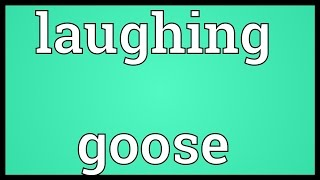 Laughing goose Meaning