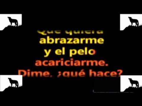 Karaoke - La Loba - Miriam Cruz - Descarga Mini Pack Karaoke