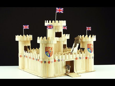 How to Make Beautiful Wooden Castle for 2 Pet Rats