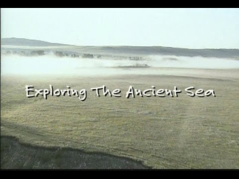 Part One: Exploring the Ancient Sea
