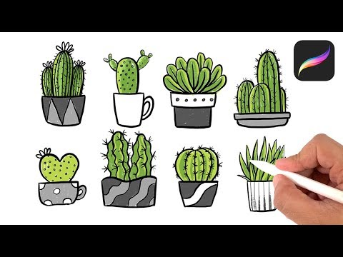 How To Draw Cactus - Drawing Tutorials