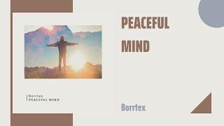 ▶Borrtex - Peaceful Mind | Uplifting Classical Piano | Cinematic🎬 Ambient🌄 Classical🎼 | Sonidius