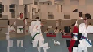 Budosport-Sakar Gürtelprüfung in TaeKwonDo und KickBoxen