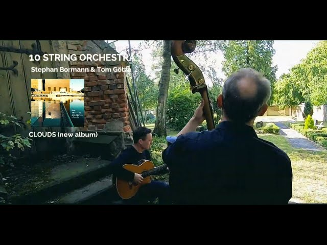 THE 10STRING ORCHESTRA [d]