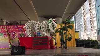 Publication Date: 2017-01-22 | Video Title: 獅藝觀摩邀請賽2017 冠軍隊-佛教何南金中學A隊 Lion