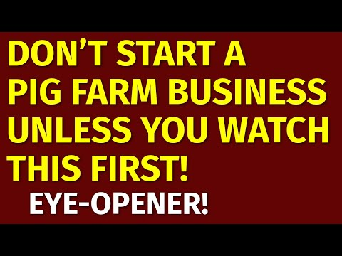 how-to-start-a-pig-farm-business-|-including-free-pig-farm-business-plan-template