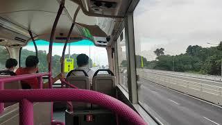 (SBST) Lornie Highway - Bus Service 74