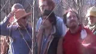 Blitzen Trapper:  Texaco chords | Guitaa.com