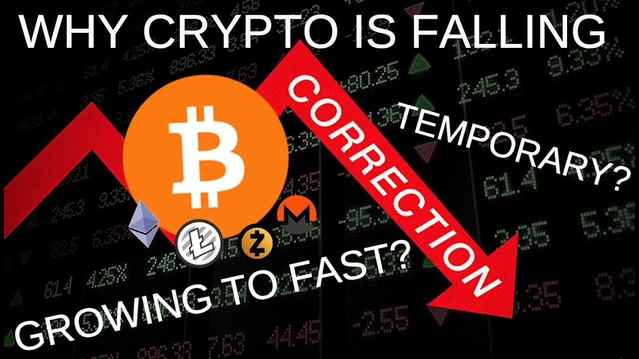 Kokias kriptovaliutas investuoti į metus? Nepriklausomi tyrimai