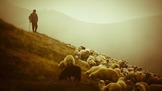 James Last - The Lonely Shepherd Instrumental