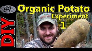 ★diy Organic Potato Tower Experiment. Grow Potatoes Like You Have Never Seen Before.