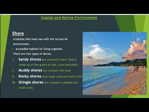 Shore || Coastal And Marine Environment || Lecture 2 || Part-1