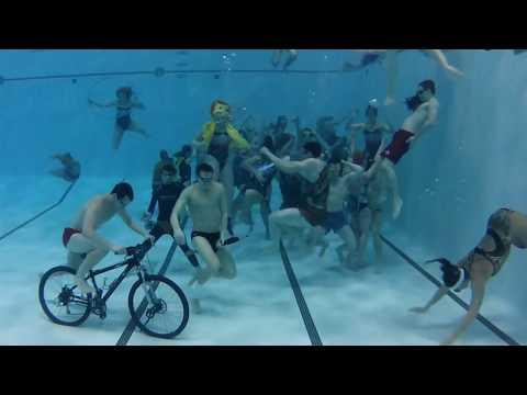 Ball State University Swim and Dive Harlem Shake
