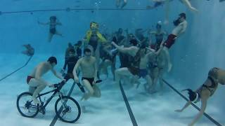 Ball State University Swim and Dive Harlem Shake