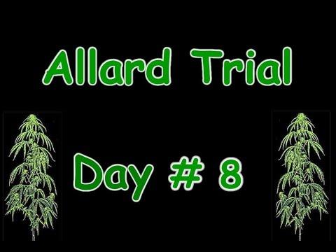 Allard VS the Queen Trial Day #8 Vancouver BC