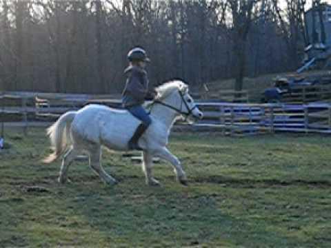 Funny- Horseback riding fail. - YouTube