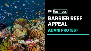 Teenage environmentalists stage last-ditch protest against Adani mine | ABC News