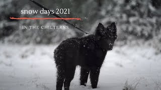 snow days in the Chilterns 2021