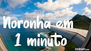 Férias no Paraíso | FERNANDO DE NORONHA | Bonitour | 4K