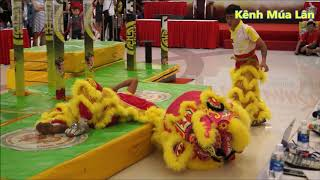 Video HighLight Falling Lion Dance Preforme in Crescent Mall Lion Dance Championship 2019