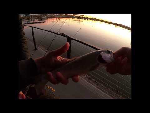 Catch & Keep - AZ Pond Trout Fishing