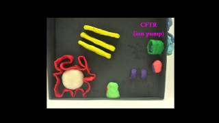 Claymation of Cholera