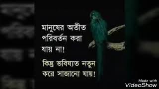 পিরিতি শিখাইয়া কোথায় গেলি হারাইয়া|