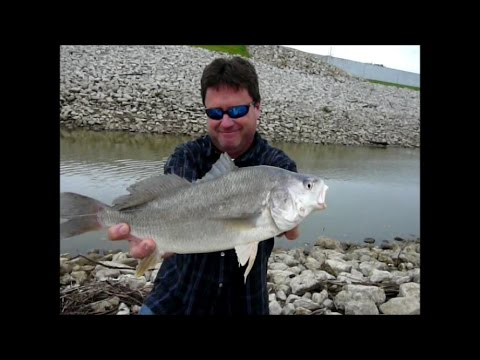 Street fishing riverside mo usa freshwater drum youtube for Missouri out of state fishing license