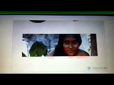 Empowering Warao Indigenous Communities
