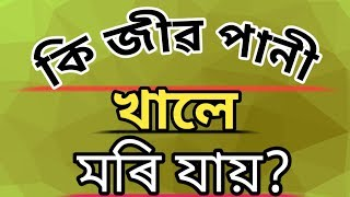 #arajuwar #abonivlog  #assamese   Assamese GK question answer