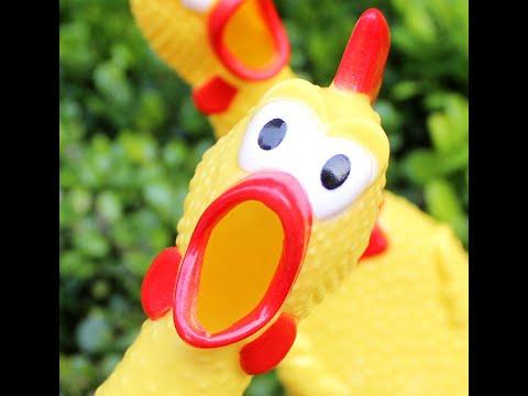 курица дети еда / смешные картинки и другие приколы