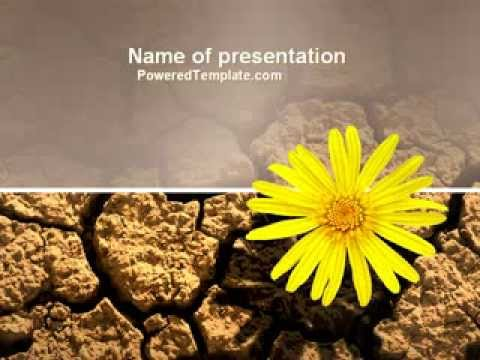 Free desert flower powerpoint template by poweredtemplate youtube free desert flower powerpoint template by poweredtemplate toneelgroepblik Image collections