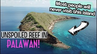 PALAWAN'S MOST BEAUTIFUL SECRET 4K | ARACELI BOAT TOUR