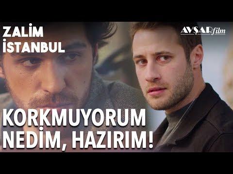 Cenk Nedim'e Teslim Oluyor! Ben Hazırım Nedim!💥 | Zalim İstanbul 19. Bölüm