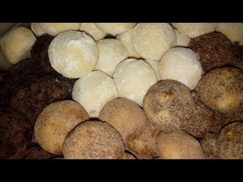 Ağızda dağılan un kurabiyesi | 3 malzemeli kurabiye | tarçınlı kakaolu kurabiye / çok kolay tarifler