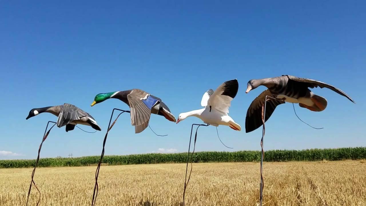 Prairiewind Decoys  **SPRING SALE** Snow Goose Clone Power