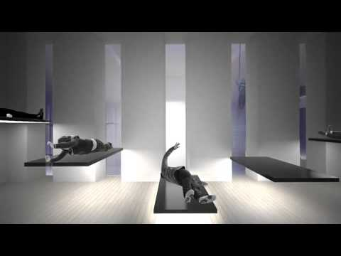 marina abramovic gives a virtual tour of the institute 480x270