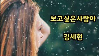 보고픈사람아~김세현♡