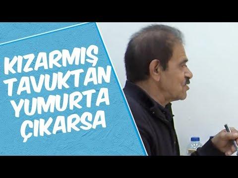 Mustafa Karadeniz -KIZARMIŞ TAVUK DAN YUMURTA ÇIKARSA