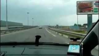 Обучение вождению автомобиля 6