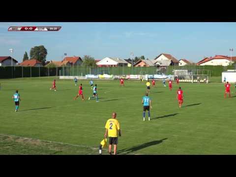 Brežice - Gorica 1:0 (0:0)